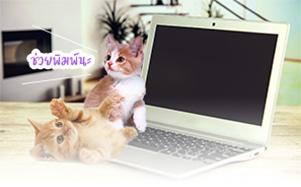 https://newsletter.thaiware.com/images/thaiware/2018/14/3.jpg