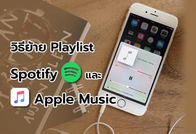 วิธีย้าย Playlists เพลงโปรด ระหว่าง Spotify ไป Apple Music